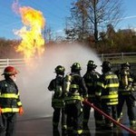 Team of fire fighters training